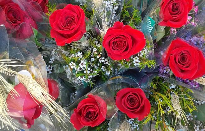 Imatge de roses de Sant Jordi