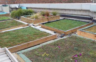Imatge de la terrassa de l'edifici Mercè Rodoreda de la UPF