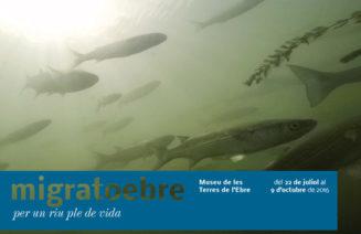 Cartell de l'exposició MigratoEbre
